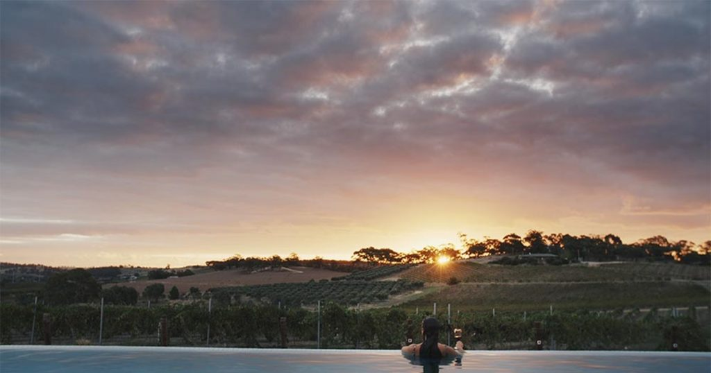 Barossa Valley: as paisagens e sabores da uva shiraz